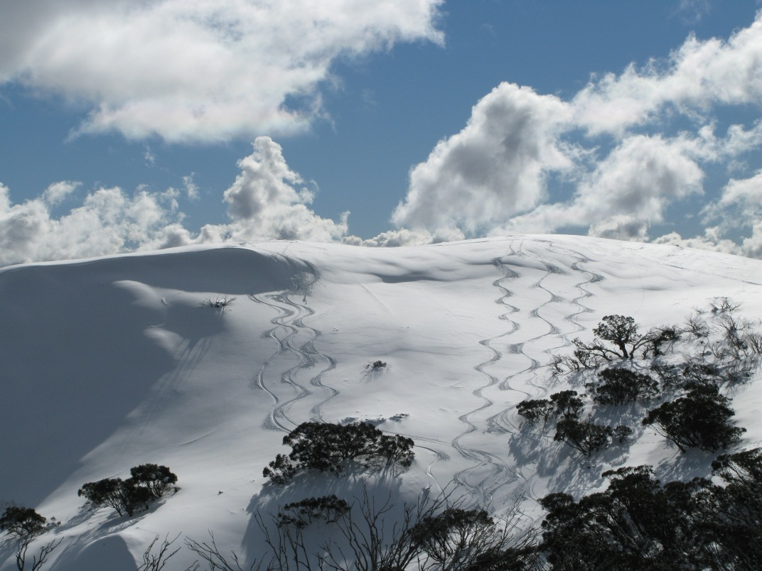 Eagle Ridge sidecountry, Mount Hotham, Australia