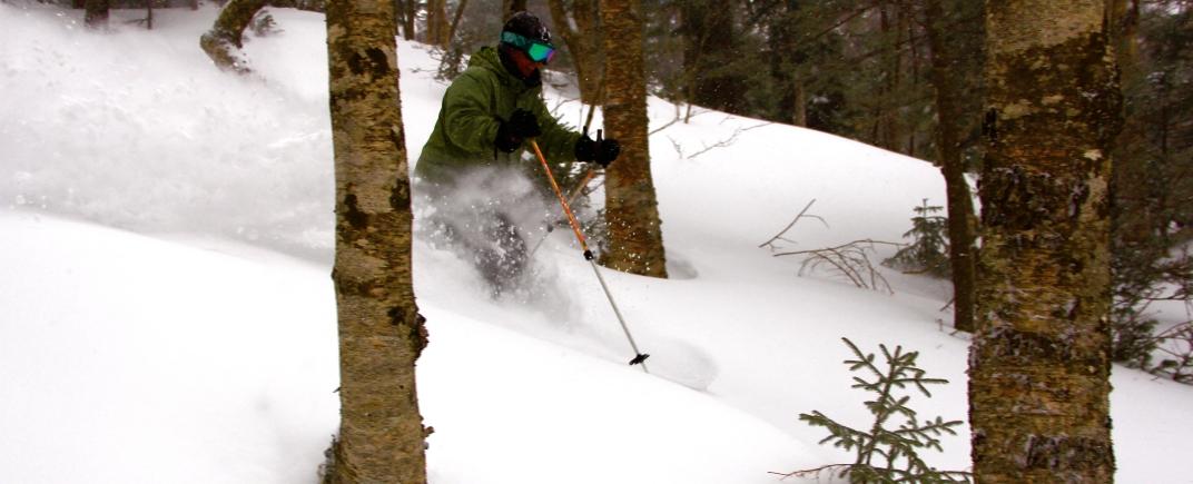 Vermont woods skiing